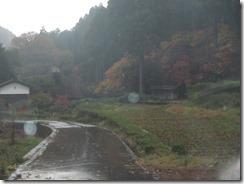 11月14日 竹田ドライブ 021