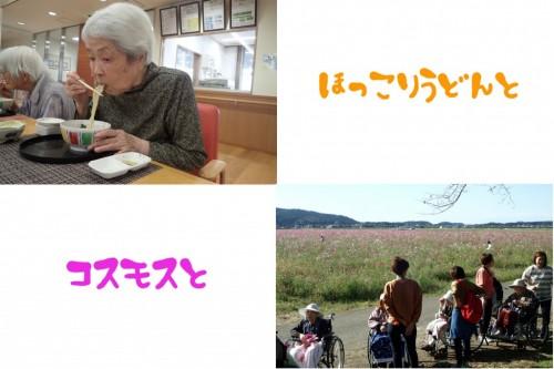 udon,kosumosu